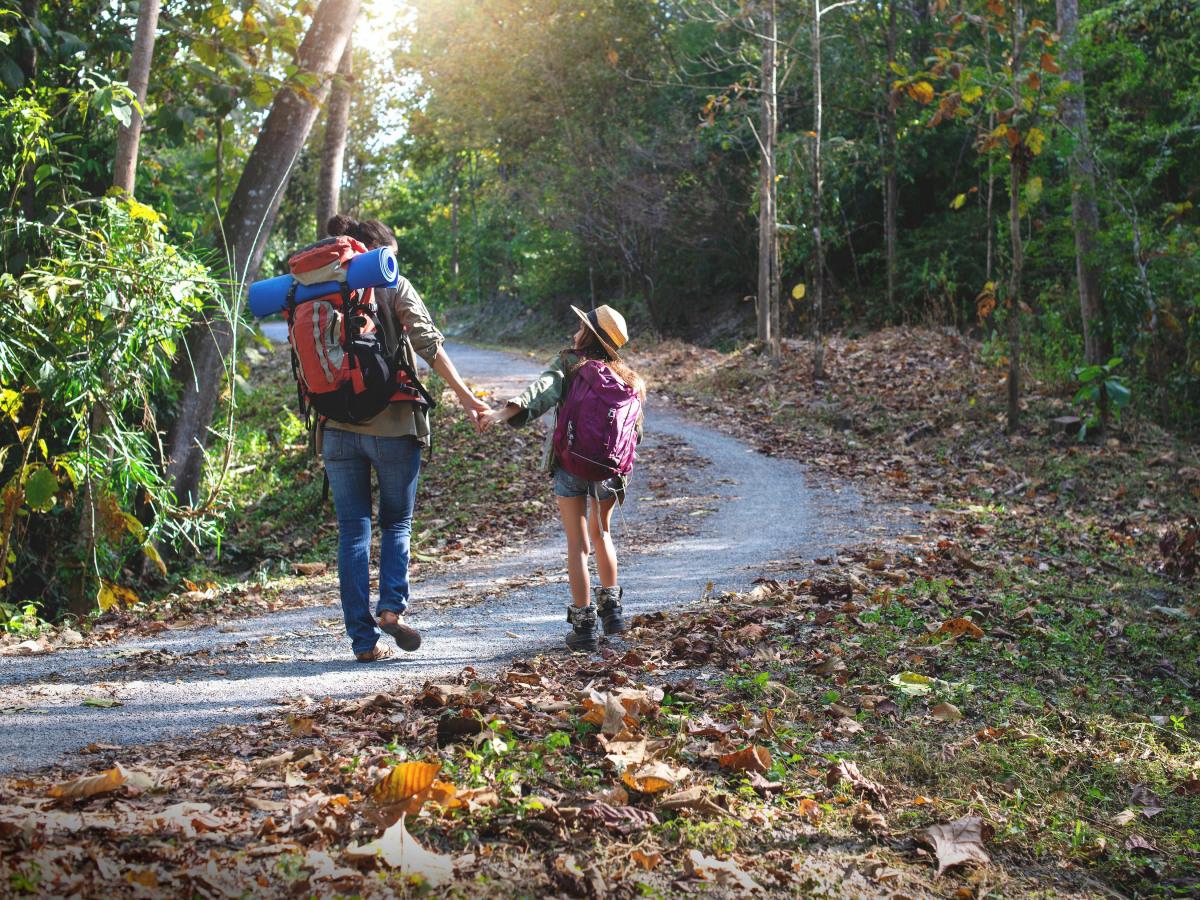 Umwelt: Mutter und Tochter, die sich an der Hand halten und zusammen einen Waldweg entlanggehen.